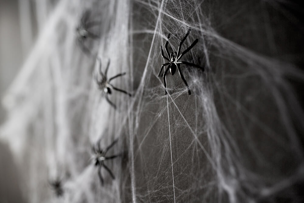 toy spiders on web